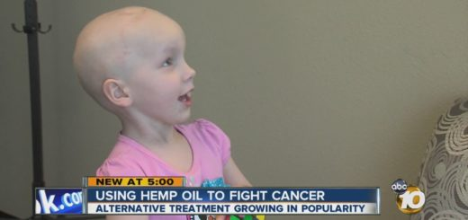 cbd oil alternative to cancer treatments