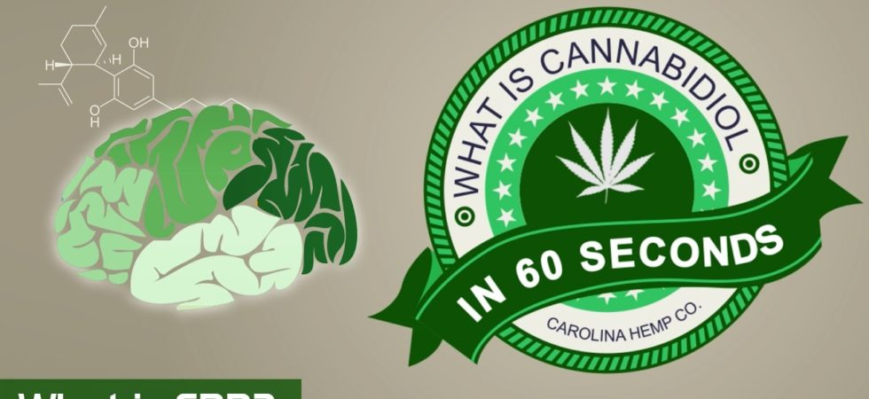 what is cannabidiol in 60 seconds